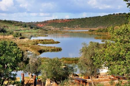 Fotografia do rio Arade